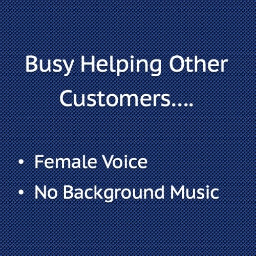 Busy Helping Other Customers, Female Voice