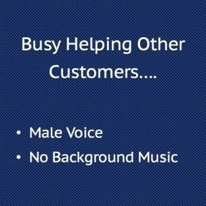 Busy Helping Other Customers, Male Voice